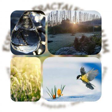 De como el observar la naturaleza nos ayuda a comprendernos.